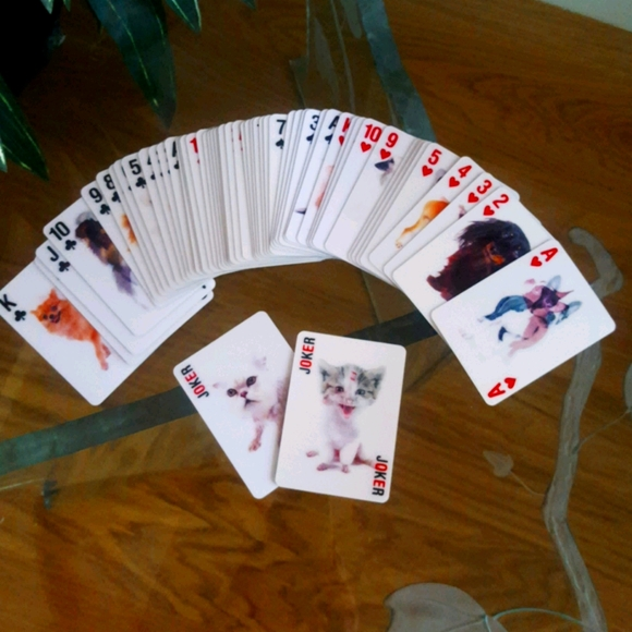 3-D Pokersize Playing Cards